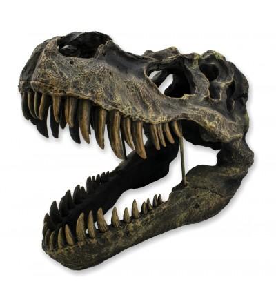 Dinosaur skull wall art